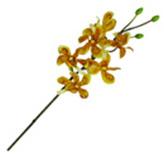 Flor Orquidea Pus Mix
