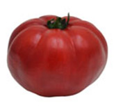 Tomate Artificial Rojo
