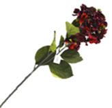 Flor Hortensia Grande Roja