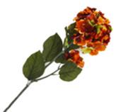 Flor Hortensia Grande Salmon