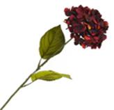Flor Hortensia Pequeña Roja