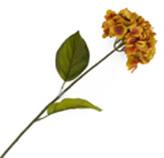 Flor Hortensia Pequeña Salmon