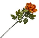 Flor Peonia Grande Naranja