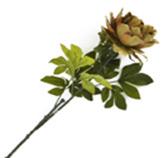 Flor Peonia Grande Gris