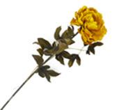 Flor Peonia Pequeña Amarilla