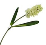 Flor Delphinium Crema