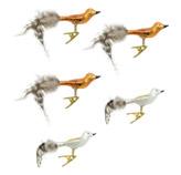 Clip con Diseño de Pájaro en Set de 5 Piezas Sparkling Rose