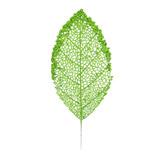 Rama Hoja Verde  41cm