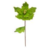 Rama  Flor Navideña Verde Limón 58cm