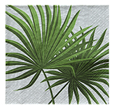 Servilleta Palm Branch 33x33cm 20 Unidades