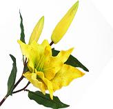Flores Decorativas