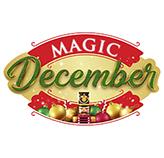 Magic December 2020