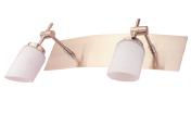 Lámpara móvil de 2 Spots Feish