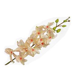 Flor Orquídea Cymb de 12 flores