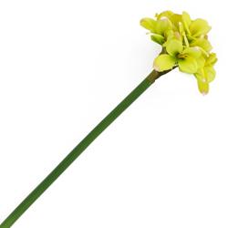Flor Amarilis Verde
