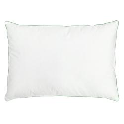 Almohada de  Aloe Vera 70x50cm