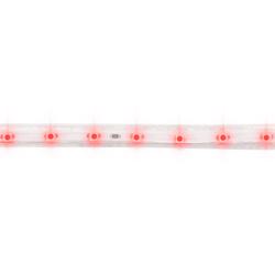 Manguera Led 1x60-110v 4.4w Roja