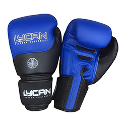 Boxing Gloves Semi-Leather Blue/Black.14oz