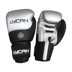 Boxing Gloves Semi-Leather Silver/Black.16oz