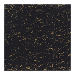 Porcelanato Negro Ouro 60x60cm