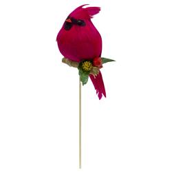 Pájaro Pick Rojo