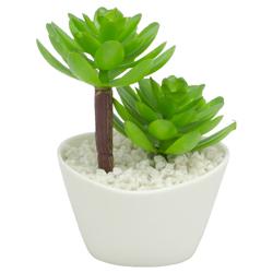 Maceta Suculenta con Planta  Artificial