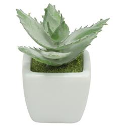 Maceta  Suculenta con Planta   Artificiales