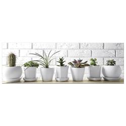 Cuadro Cactus 7 Macetas 30x90cm