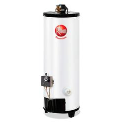 Calentador de Agua 13 Galones a Gas Rheem