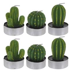 Velas Teacup Cactus 6 Unidades