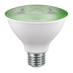 Foco Led Par38 13w E27 Luz Verde Eurolight